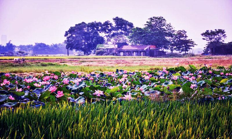 THÁCH THỨC đối với sự PHÁT TRIỂN LÀNG XÃ Việt Nam hiện nay