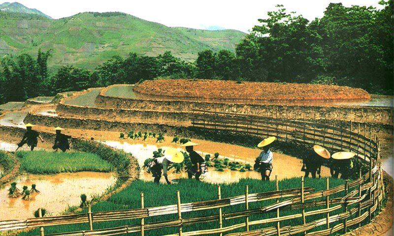 NGƯỜI HÀ NHÌ trong Cộng đồng 54 Dân tộc anh em ở Việt Nam