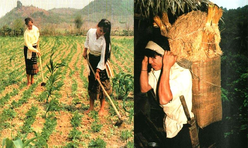 NGƯỜI THỔ trong Cộng đồng 54 Dân tộc anh em ở Việt Nam